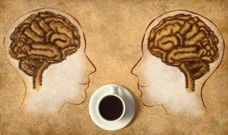 memória-koffein